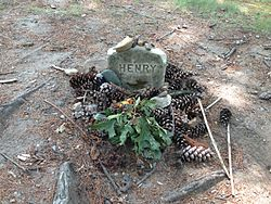henrydavidthoreayGrave_of_Henry_David_Thoreau